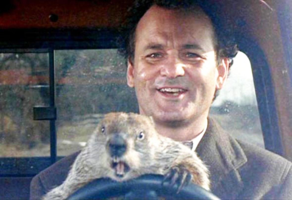 bill murray 'groundhog day'