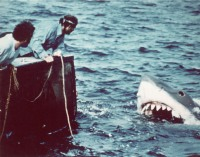 jaws-facts-5