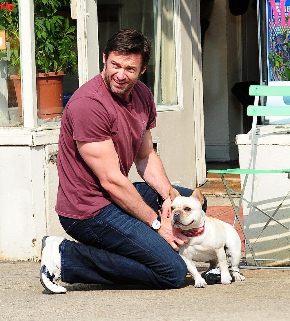 hugh-jackman-and-dog
