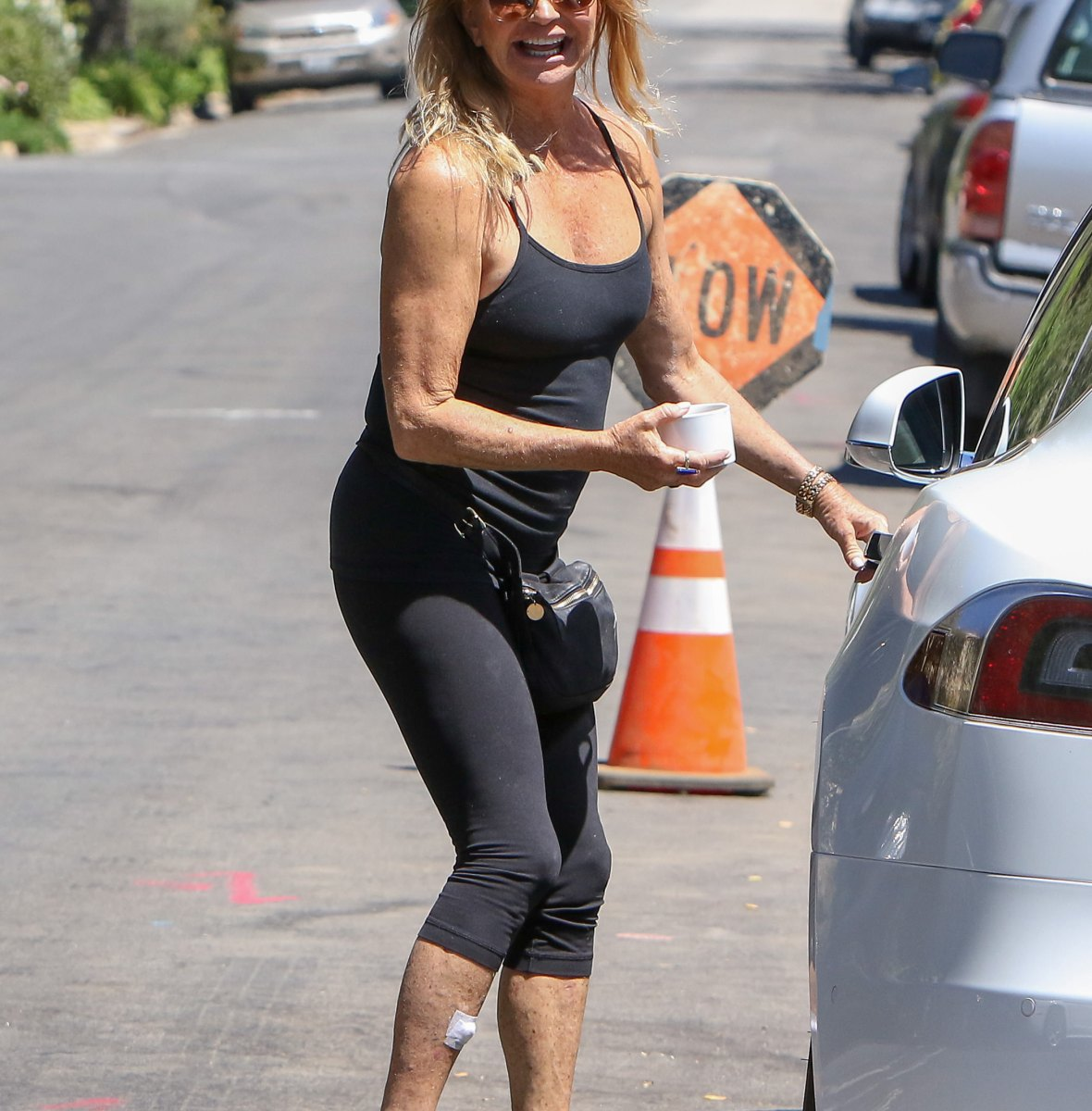 goldie hawn getty images