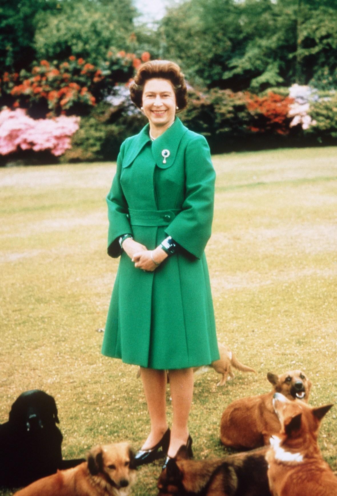 queen elizabeth ii corgis 2