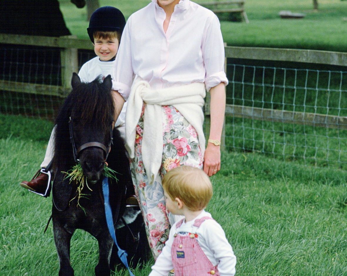 princess diana horse prince william