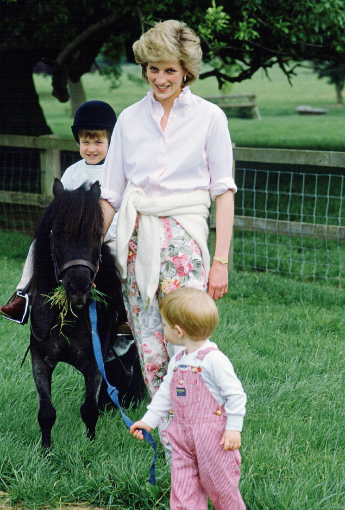 princess diana horse prince william