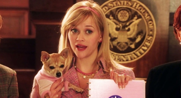reese witherspoon legally blonde 2 mgm