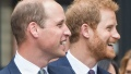 prince-harry-prince-william