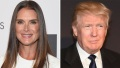 brooke-shields-donald-trump-date