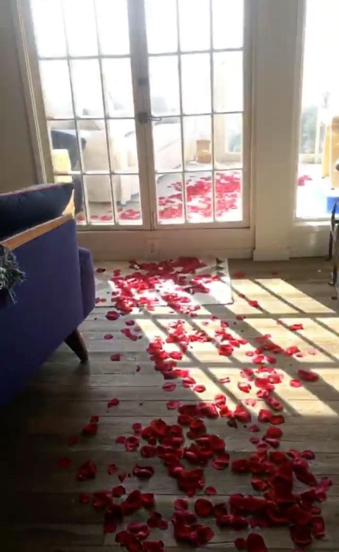 nichole gustafson rose petals - instagram
