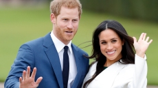 prince-harry-meghan-markle-dogs