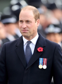 prince-william-poppy-brooch