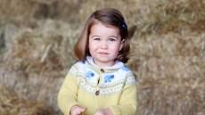 princess-charlotte-color