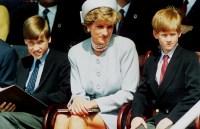 Princess Diana Sons
