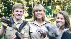 robert-irwin-hospitalized