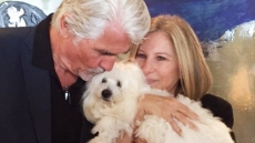 barbra-streisand-dogs