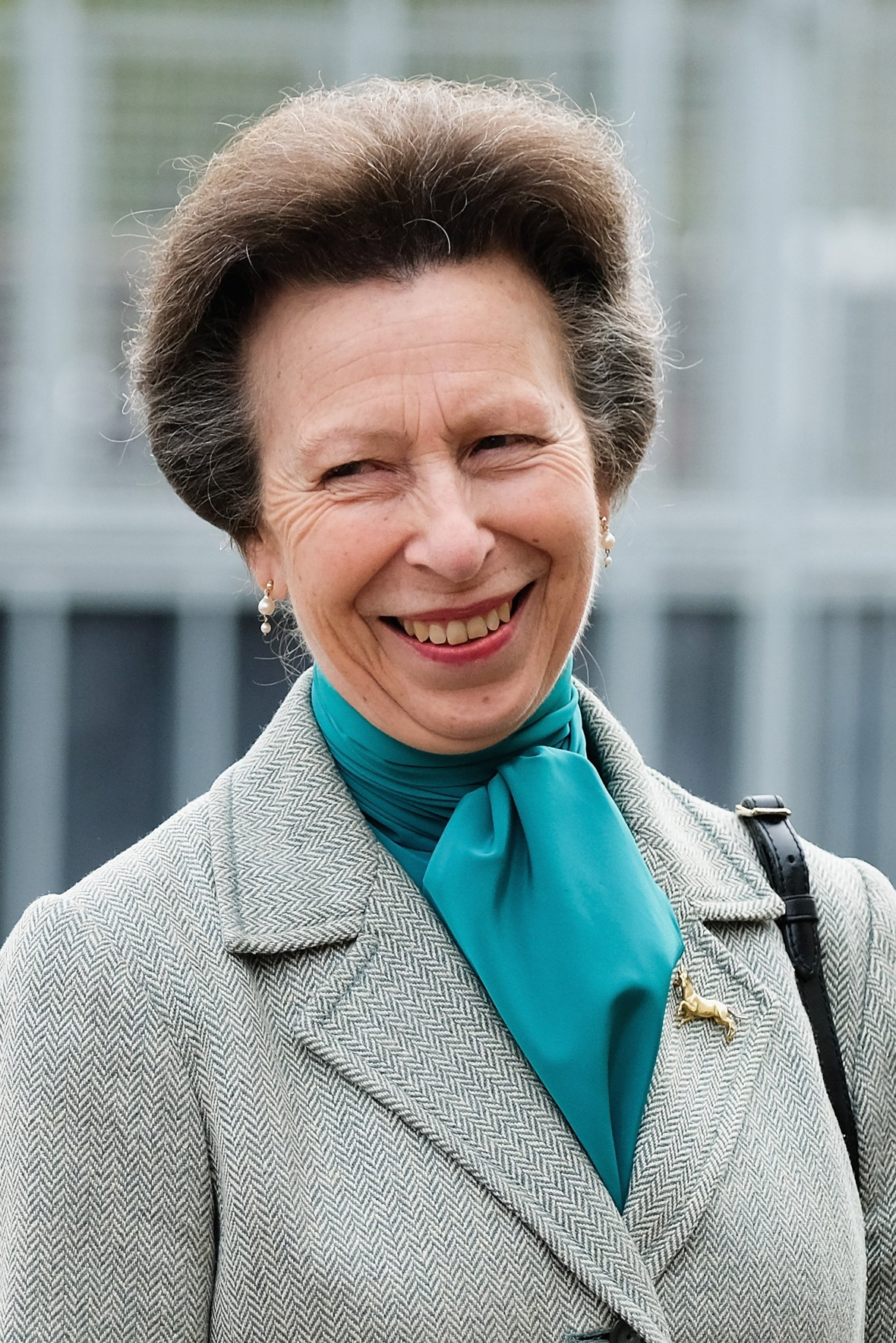 princess anne getty images
