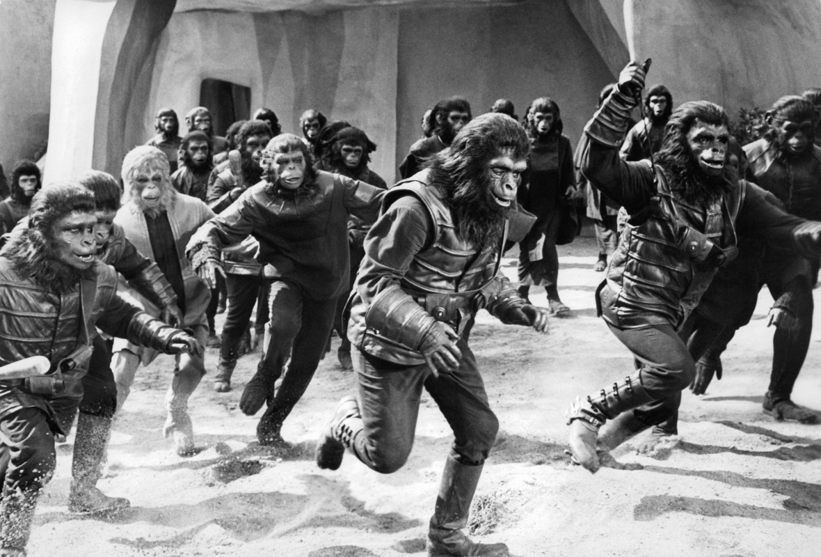 'planet of the apes' getty images