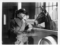 mister-ed-francis-the-talking-mule