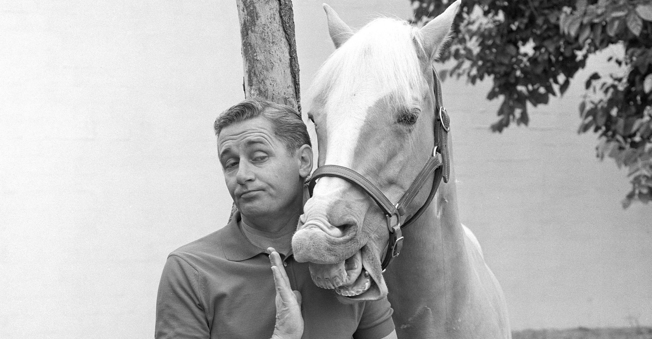 Mister Ed  – SE1 – Ep8 – The Aunt
