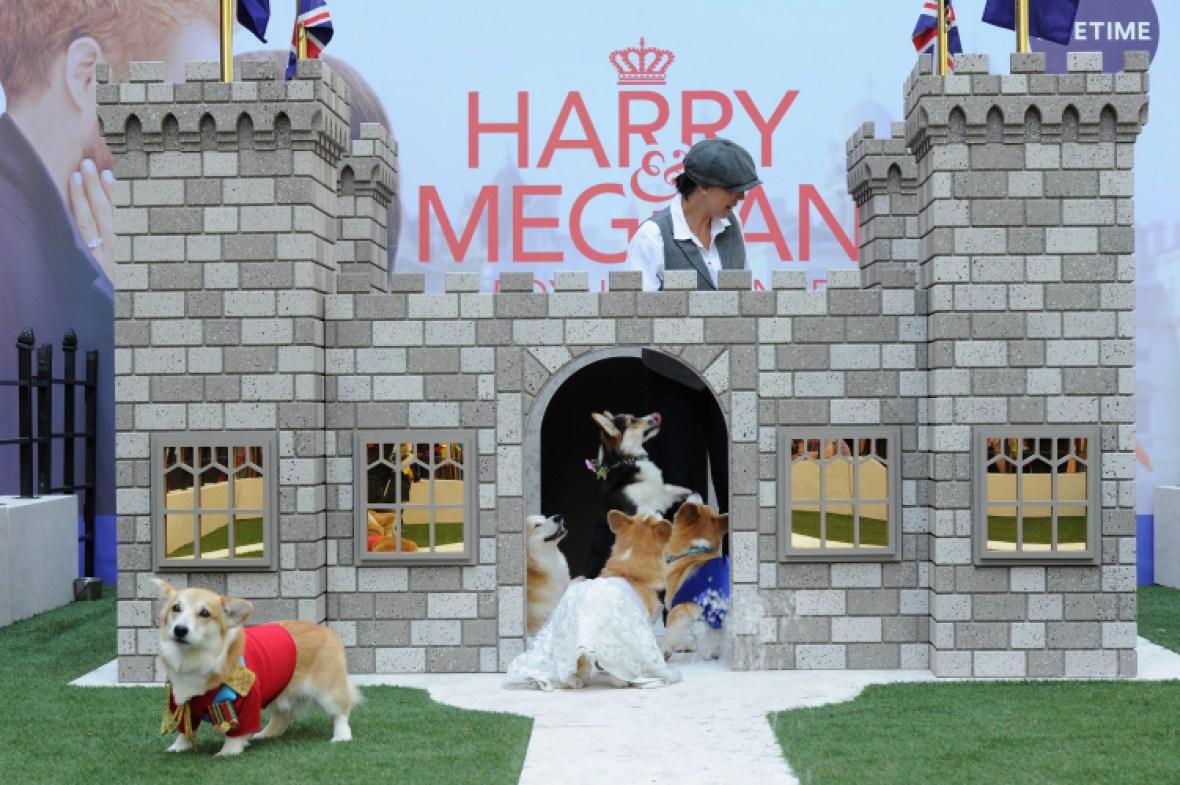 corgi royal wedding lifetime movie