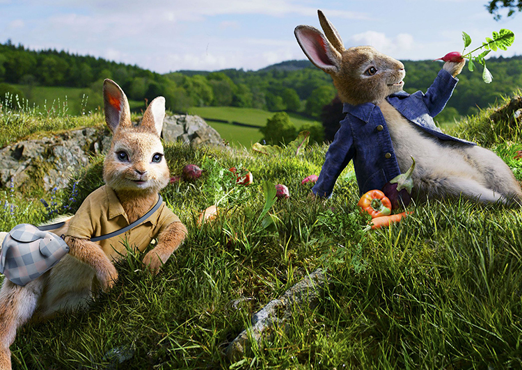 Peter rabbit giveaway win it wednesday