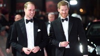 prince-harry-william