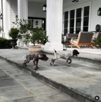 rob-lowe-montecito-mansion