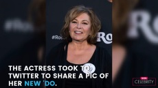 Roseanne Barr Flaunts Blonde Hair Following Her Show's Cancellation