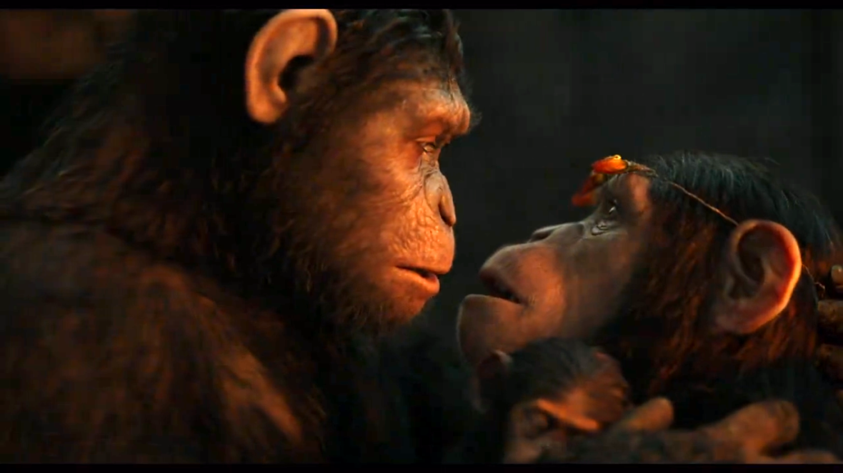 judy-greer-planet-of-the-apes2