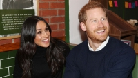 prince-harry-meghan-markle-new-dog