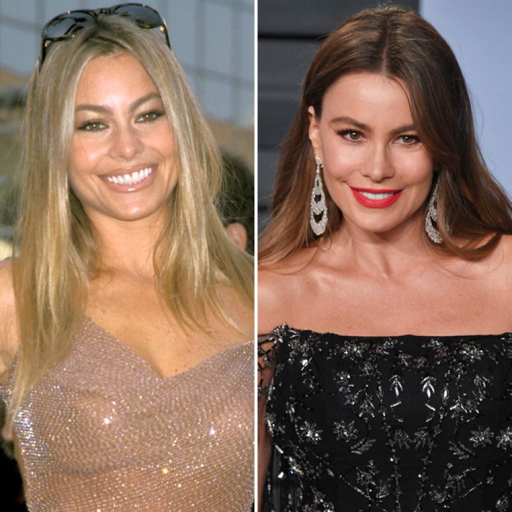 sofia vergara before and after