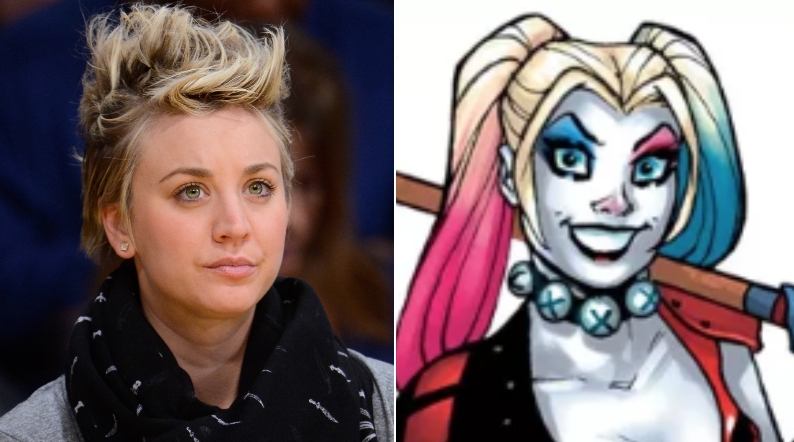 4e6060972f5d  Big Bang Theory  Star Kaley Cuoco Brings The Crazy To Harley Quinn In The DC  Universe Animated Series