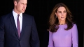 kate-middleton-prince-william-first-joint-engagement-prince-louis-birth