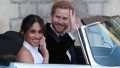 prince-harry-meghan-markle-train