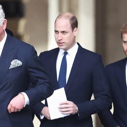 Prince Charles William Harry Trash