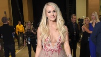 carrie-underwood-country-music-awards-flower-mesh-dress