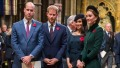 prince-harry-prince-william-and-their-wives-are-reportedly-spending-christmas-together
