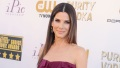 sandra-bullock-19th-annual-critics-choice-awards-magentic-ruffle-dress