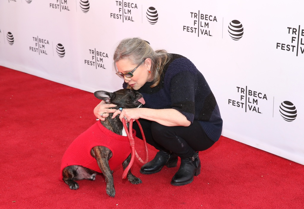 Carrie Fisher Gary the Dog
