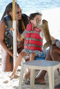 Eric Cowell spends the afternoon playing and feeding a Cajan Green Monkey while on the beach in Barbados