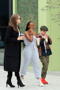 Angelina Jolie shopping at the mall with her children