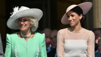 meghan-markle-camilla-parker-bowles-prince-charles-70th-birthday-patronage