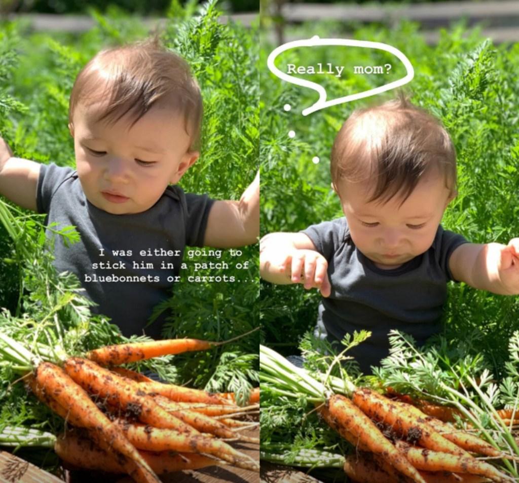 joanna-gaines-instagram-baby-crew-carrots-easter6