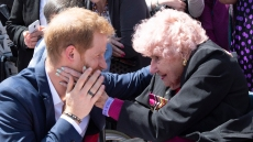 prince-harry-fan