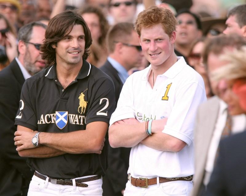 Prince Harry Nacho