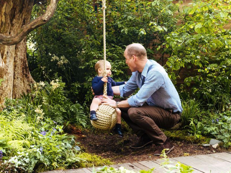 Prince William Prince Louis