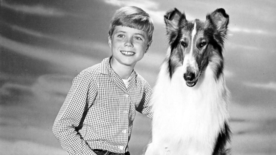 jon-provost-and-lassie