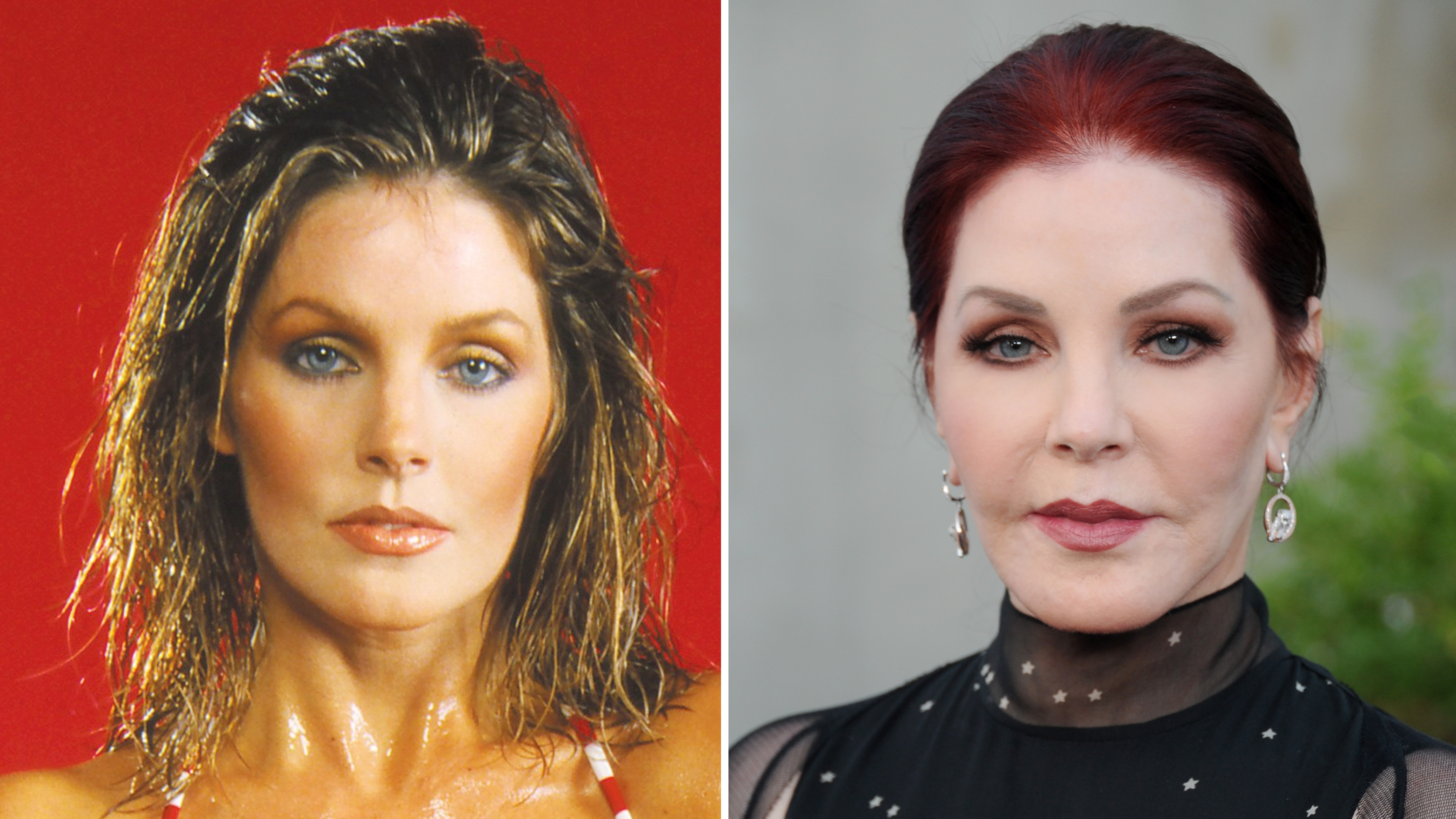 Priscilla Presley Then And Now See The Actress Transformation