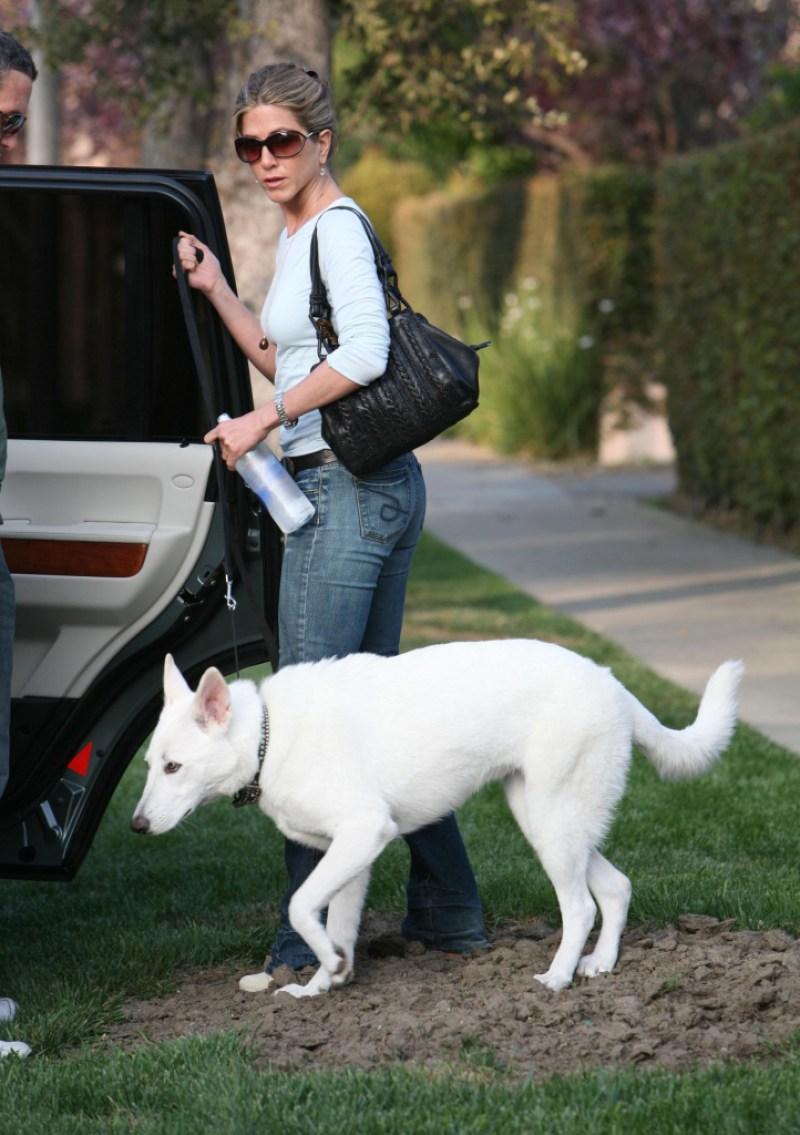 jennifer-aniston-justin-theroux-dog-dies-reunion
