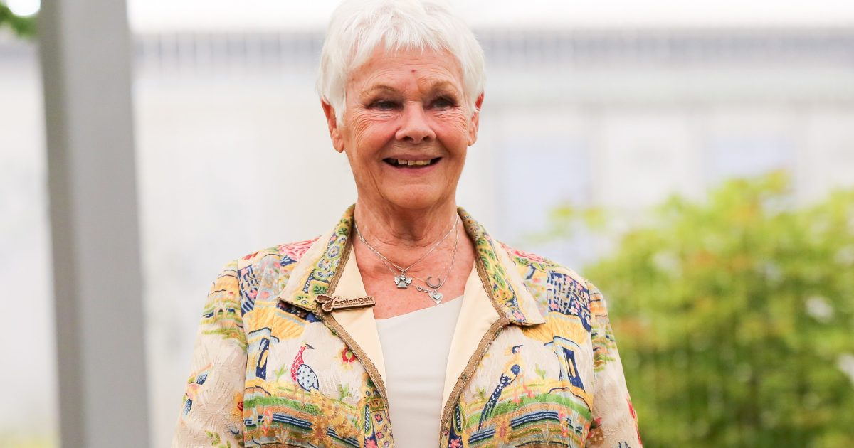 Judi Dench Health Update: Actress Deals With Worsening ...