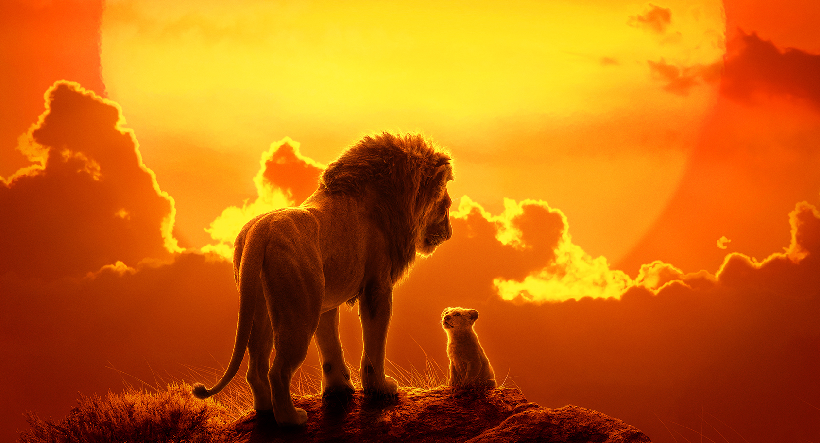 The Lion King Cast Meet The Voices Of The Live Action Characters
