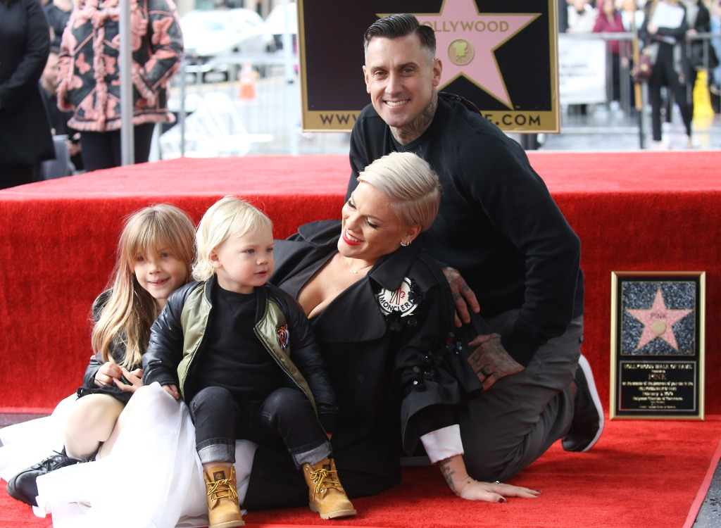 pink-carey-hart-family